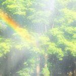 虹が開運のシンボルである秘密とは